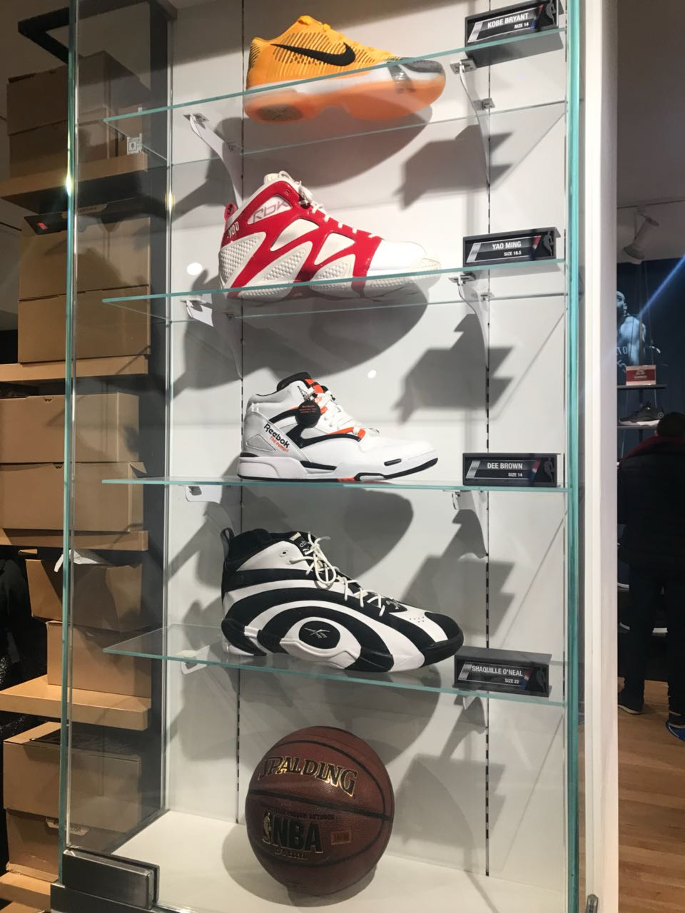 Shoes NBA STORE – Style Discoverer